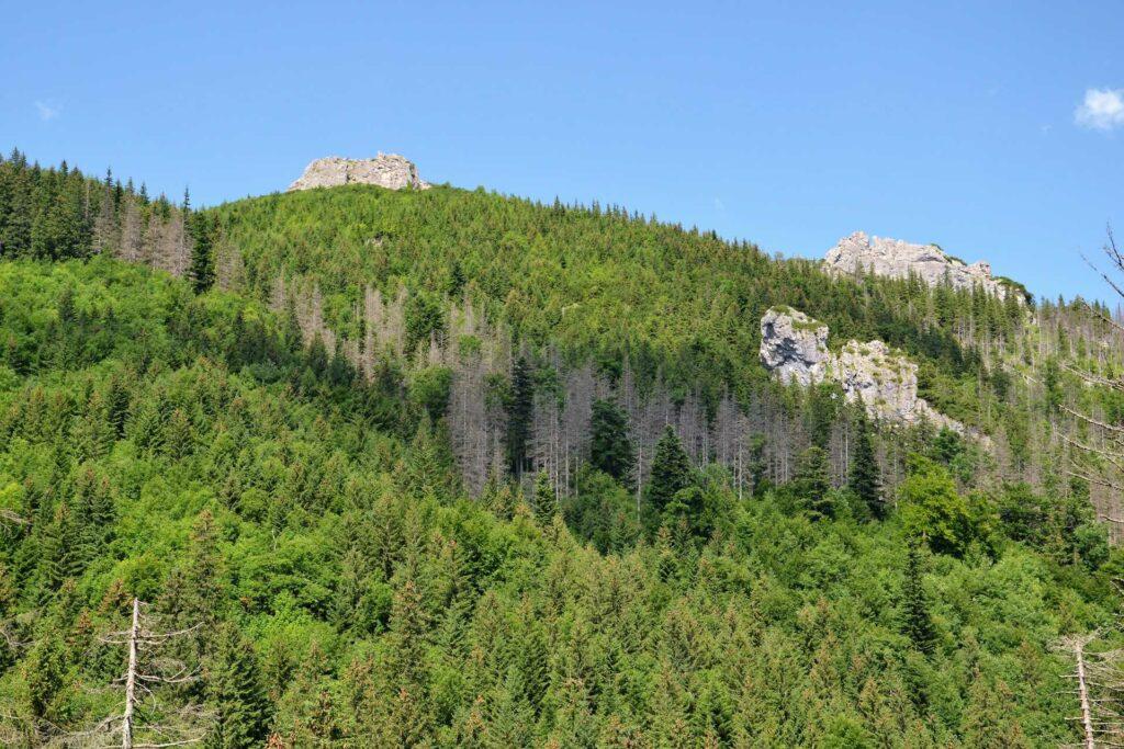 doliną białego na sarnią skałę