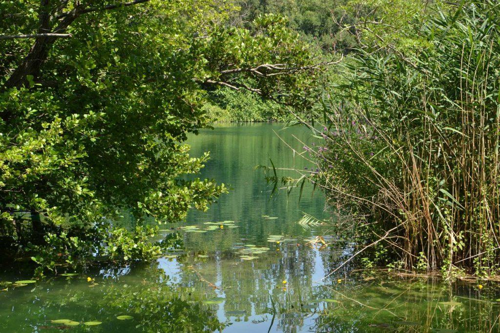 Chorwacja - Park Narodowy Krka